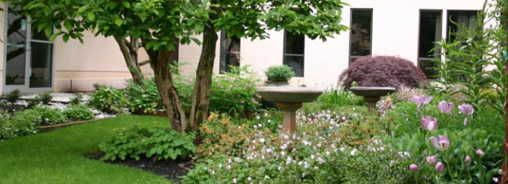 Healing Gardens Spirit and Science Peg Ferm Landscape Architect